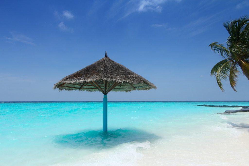Proteggi la tua pelle con i solari alta protezione Aloe Vera Forever!
