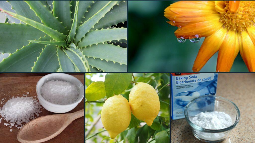 I 5 prodotti naturali da usare per la casa e la persona