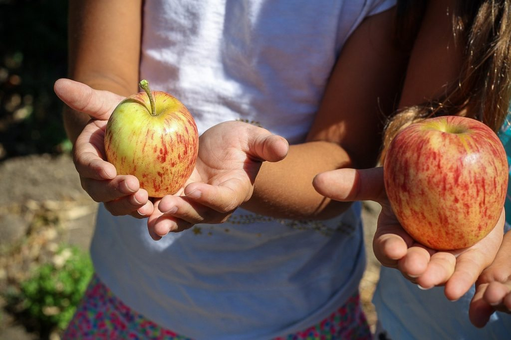 4 attività da fare con i bambini all'aperto e in cucina